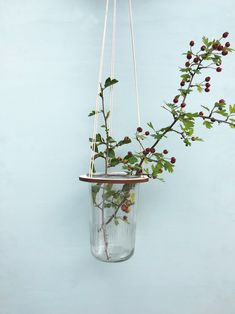 Hang your plants from the ceiling with the minimalist design from LEERBAEK. Birch is space saving as your plants come up Ceiling Art, Black Ceiling, Ceiling Beams, Green Environment, Home Flowers, Nordic Home, Interior Plants, Slow Living, Urban Farming