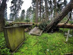 Strom damage on cemetery. . . . . . #hautausmaa #instafinland #järvenpää #travel #traveler #traveling #travelgram #finnishboy #landscape #landscape_lovers #finnish #travelphotography #instatravel #myrsky #instagramers #visitfinland #thisisfinland #discoverfinland #nature #hiking #follow #followme #finnishmoments#lovelyfinland #thebestoffinland #myrskytuho #instarunners #trailrunning #beautyofsuomi #fitness
