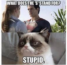 grumpy cat hates superman lol