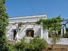 Maison+de+campagne+avec+une+magnifique+pergola+++Location de vacances à partir de Province de Lecce @homeaway! #vacation #rental #travel #homeaway