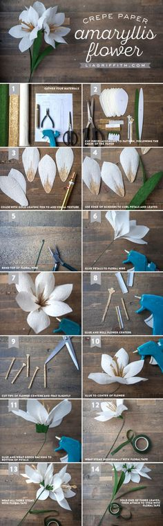 DIY Crepe Paper Amaryllis Yes! We're back with one of our favorite crafts – paper flowers. Our crepe paper amaryllis makes a nifty little h. Handmade Flowers, Diy Flowers, Fabric Flowers, Origami Flowers, Origami Butterfly, Flower Diy, Ribbon Flower, Flower Wall, Tissue Paper Flowers