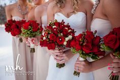 Michelle Huber Photography