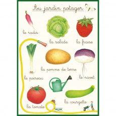 Affiche didactique - Jardin potager