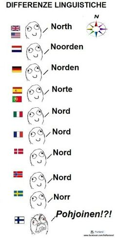 Learn some finnish. I can verify this, I'm a finn and I (really) speak this language ;D<< Finnish language is so weird Funny Facts, Funny Memes, Hilarious, Jokes, Learn Finnish, Finnish Words, Finnish Language, Text Posts, Love Words