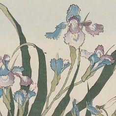 Katsushika Hokusai (1760 - 1849), Flowers.