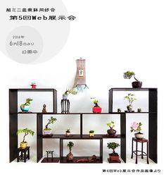 Super-Mini-Bonsai Topf Club 5. Web Ausstellung TOP Indoor Bonsai Tree, Bonsai Art, Bonsai Plants, Mame Bonsai, Japan Garden, Miniature Trees, Dining Decor, Growing Tree, Miniture Things