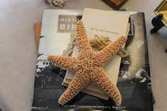 Miss Kopy Kat: Do It Yourself Whimsical Starfish
