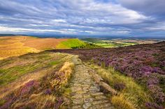 Clouds gather above the Cleveland Way and the heather-clad Little Bonny Cliff, North Yorkshire Moors, Yorkshire, England, United Kingdom, Europe