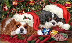 Cavalier - Santas Helpers (Tri-Color)