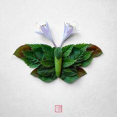 Insects made of flowers and plants by Raku Inoue | Inspiration Grid | Design Inspiration
