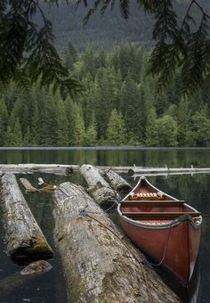 canoe on the lake in the forest / woods / camping aesthetic / rustic photography / green and brown Oh The Places You'll Go, Places To Visit, Canoe And Kayak, Canoe Trip, Lake Life, Adventure Is Out There, Belle Photo, The Great Outdoors, Beautiful Places