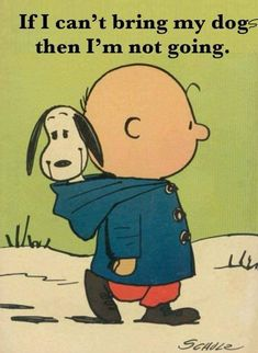 Snoopy and Charlie Brown just belong together😊 I don't have a doggy right now. I thought this was so cute! I Love Dogs, Puppy Love, Cute Dogs, Peanuts Cartoon, Peanuts Snoopy, Snoopy Quotes, Dog Quotes, Qoutes, Charlie Brown And Snoopy