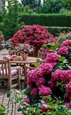 gorgeous dark pink hydrangea garden dining area ♥