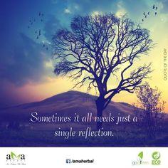 """Sometimes it all needs just a single reflection."" #Qoteoftheday.Happy #GuruPurnima ! https://www.facebook.com/amaherbal/photos/a.283777945111081.1073741829.274434279378781/504164449739095/?type=1&theater…"