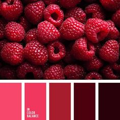 Raspberries colors. Totally love those pink and dark red colors.