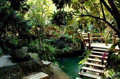 Hidden koi pond