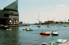 Baltimore: #9. Inner Harbor--Aquarium