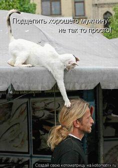 Anal massage photos