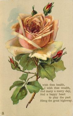 Peach-colored rose & buds.  Poem:  I wish thee wealth, and many a merry day... and a happy heart to play the part along the great highway.