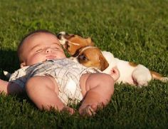 Baby asleep with watchful puppies guarding ? #sweet #baby #puppies #cute #sleep #adorable #precious