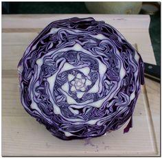 Fractal Cabbage