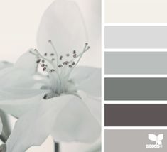 gray bathroom---flora tones color palette from Design Seeds Palettes Color, Colour Pallette, Color Palate, Colour Schemes, Color Patterns, Color Combinations, Design Seeds, Color Harmony, Deco Design