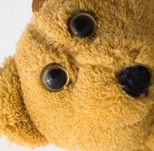Kids Teddy Bear & Pajama Day Activities