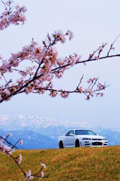 Nissan Skyline Gt R, Nissan Gtr R34, R34 Gtr, Nissan Gtr Skyline, Tuner Cars, Jdm Cars, Street Racing Cars, Auto Racing, Drag Racing