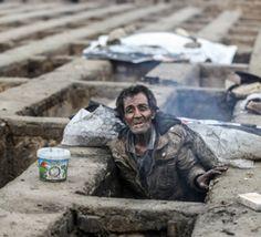 معاون+وزیر+بهداشت+ایران+از+جمعآوری+بیش+از+۷۰۰۰+گورخواب+در+یک+روز+اعتراف+کرد