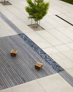 The Nueva School by Andrea Cochran Landscape Architecture, via Behance