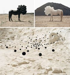 Andrea Galvani: He likes to use photography to create images. He would arrange his subjects so that they look as if they were photoshopped. Bubble Balloons, Art Folder, Seesaw, Create Image, Pop Surrealism, Environmental Art, Horse Art, Art Object, Surreal Art