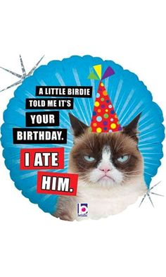 Get 10 off happy birthday card grumpy cat illustration 18 grumpy cat i ate him birthday foil balloon best price bookmarktalkfo Image collections