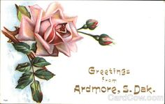 Greetings From Ardmore South Dakota Flowers