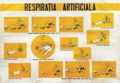 21 dintre cele mai amuzante afișe comuniste din România lui Ceaușescu - VICE Mai, History, Movie Posters, Character, Historia, Film Poster, Billboard, Lettering, Film Posters