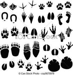 Vector - Animal Footprint Track Vector - stock illustration, royalty free illustrations, stock clip art icon, stock clipart icons, logo, line art, EPS picture, pictures, graphic, graphics, drawing, drawings, vector image, artwork, EPS vector art