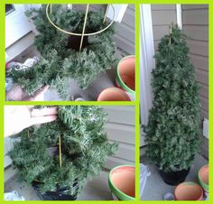 """easy & cheap tomato cage frame """"trees"""" for Christmas front porch"""