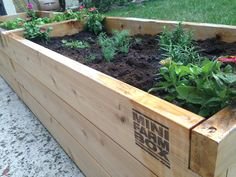 Genial Raised Garden Bed Kits   By MinifarmBox Makes Organic Container Gardening  Easy #gardening | Raised Garden Beds By MinifarmBox | Pinterest | Raised  Garden ...