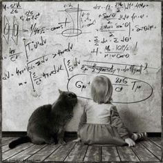 I'll help you with your algebra.