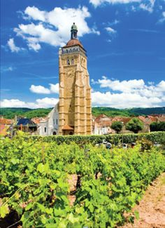 The St-Just church in Arbois - click through for an article on why Jura wines are popular in NYC. St Just, Organic Wine, In Pursuit, Amazing Buildings, Wineries, Lighthouses, Wine Country, Big Ben, Countries