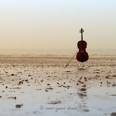 I mean yeah this looks cool but I'm cringing at the thought of sand on the bow hair and the salty air on the poor cello
