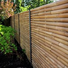 Discover the best Bamboo Screening. Buy your Giant Bamboo Fence Panel 180 x 180 cm at Bamboo Import Europe. Bamboo Screening Fence, Bamboo Privacy Fence, Bamboo Garden Fences, Privacy Fence Designs, Bamboo Fencing Ideas, Bamboo Ideas, Fence Ideas, Diy Fence, Fence Landscaping