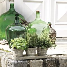 France & Provence Style. Love the green bottles.