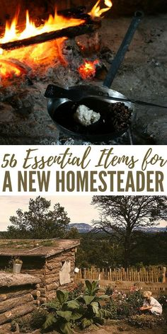 56 Essential Items for A New Homesteader - Starting a new homestead, especially as someone who has been living in the city the whole life, takes a huge amount of courage. It's not easy, mentally and physically. But that's not the only thing you need. Realistically, you'll also need tools, equipment, and supplies to help you live the new life. Preparing these items is the first step to living a self-sufficient homestead life.