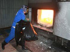 6ª Seccional incinera mais de meia tonelada de entorpecentes