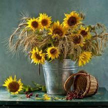 Sunflowers in a milk bucket