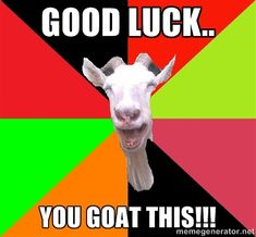 Good luck.. You goat this!!! - Goats | Meme Generator