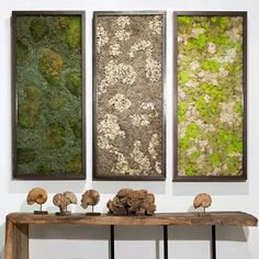 Image result for homemade moss wall