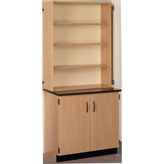 Stevens ID Systems Science 2 Door Storage Cabinet Color: Evening Tigris, Finish: Light Oak
