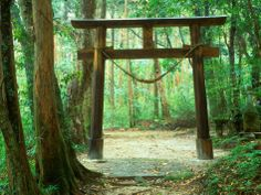 Mountain Shrine, Yakushima, Kagoshima, Japan Photographic Print