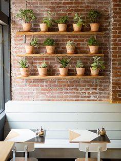 Trouvailles Pinterest: Plantes Source: Barbara Peck